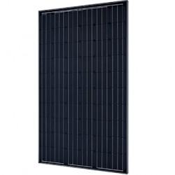 Solarworld 250 Mono