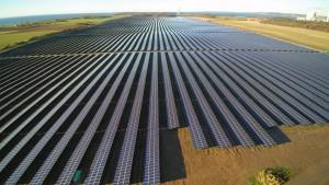 Lerchenborg solcellepark 61 MW. Opført af Tyske Wirsol