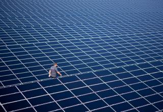 Tysk udbud 0,50 øre pr kWh